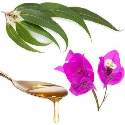 Remedio contra la tos con flemas