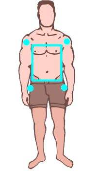 Como saber el tipo de cuerpo