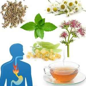 Infusiones anti acidez muy buenas para la acidez del estómago