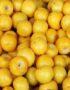 Beneficios  y propiedades de comer la fruta nance o nanche