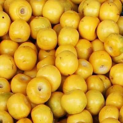 Fruta mexicana nances