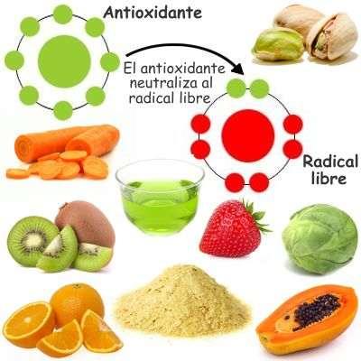 ¿Qué importancia tiene los alimentos antioxidantes en nuestro organismo?