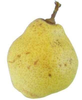 Porque es importante comer una pera al día ¿qué pasa si como pera?