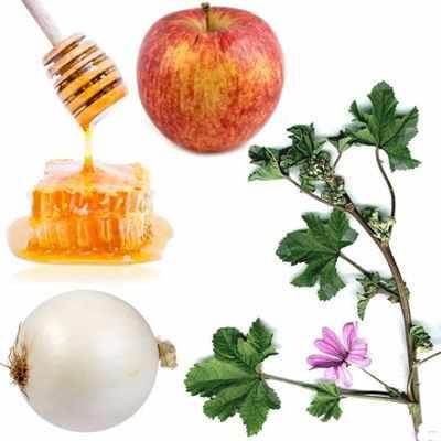 Té de manzana, cebolla y miel para limpiar el organismo