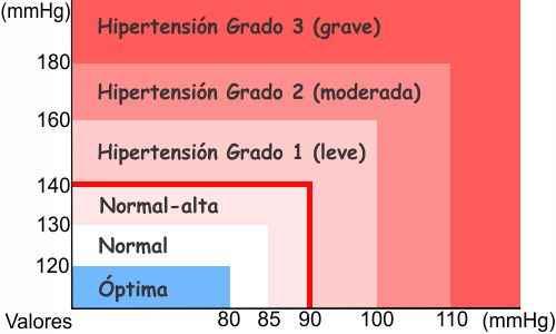 Cambios ocurridos en el cuerpo a causa de la hipertensión arterial