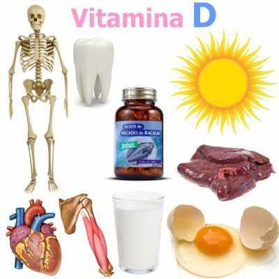 ¿Para qué nos sirve la vitamina D en nuestro cuerpo?