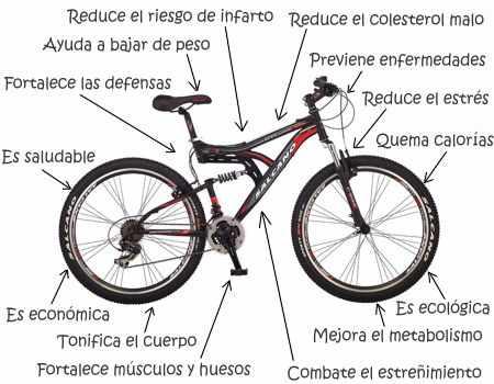 ¿En qué te favorece andar en bicicleta?