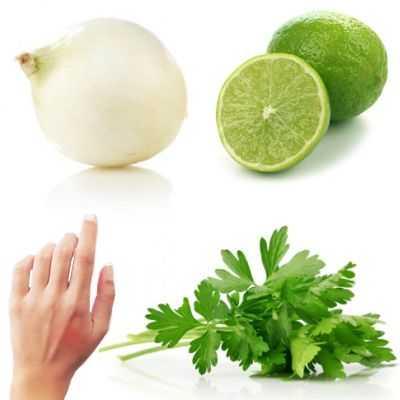 Limón, perejil y cebolla como repelente y para combatir las picaduras