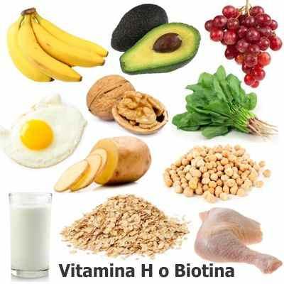 Función de la vitamina H o Biotina en el cuerpo humano ¿Qué nos aporta la vitamina H?