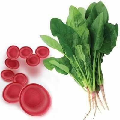 Beneficios y propiedades de la espinaca para curar la anemia