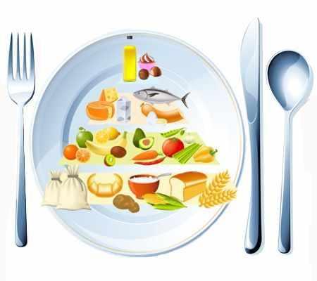 Bases y beneficios de una alimentación equilibrada ¿A qué llamamos alimentación equilibrada?