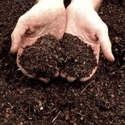Beneficios que aporta la composta orgánica casera