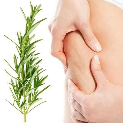 Beneficios y propiedades del romero para quitar la celulitis