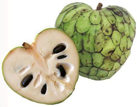 Frutas saludables para mantener saludable el organismo
