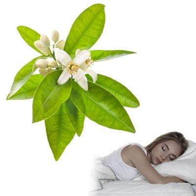 Té de hojas de naranjo para el insomnio y para dormir bien