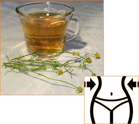 ¿Cómo tomar té de manzanilla para adelgazar, perder barriga y tener un mejor cuerpo?