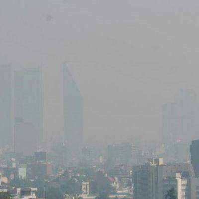 ¿Por qué en la ciudad no se respira aire puro?